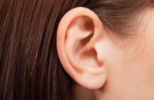 oreille-audition
